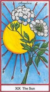 130704 Herbal XIX Sun