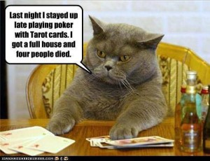 tarot poker cat