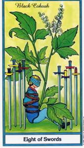 131024 Herbal 8 of Swords