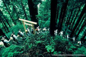 140802 Sacred into Social Kii_Mountain_Range