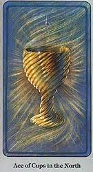 141016 ACe of Cups Haindl