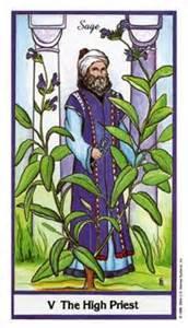 150115 V Heirophant High Priest Herbal