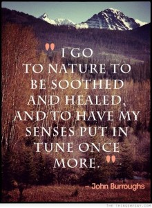 1605 Tuning to Nature
