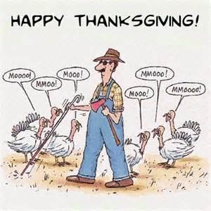 171116 turkey moo
